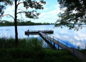 """Озеро Белое, выход с базы отдыха """"Белые Росы"""""""